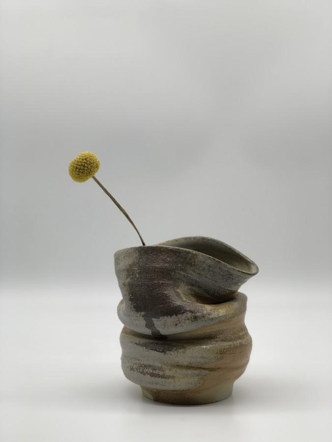 Vaza   Anagama